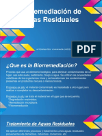 biorremediacic3b3n-de-aguas-residuales.pptx