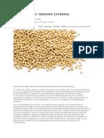 Cae la soja (y seguirá cayendo)_C4_M1.pdf