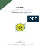TELAAH JURNAL.docx