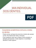 ANAtomia dental individual para asb