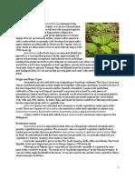 KULITIS Benfits.pdf
