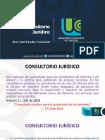Presentación Modulo de Conciliación en Civil, Familia y Comercial