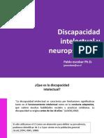 Discapacidad Intelectual y Neuropsicología.pdf
