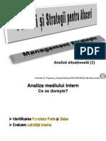 PSA P3_Analiza Situationala_Mediul Intern -2019