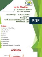 Neurogenic Bladder (Ayurveda Co-relation)