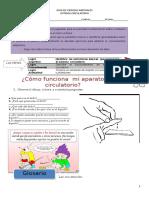 Guia 2 Sistema Circulatorio1