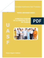 TU DFPR-RAV (1).pdf