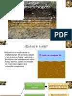 Procesos edafológicos.pptx