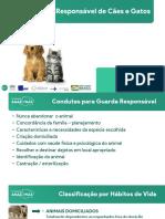 Guarda Responsável de Cães e Gatos