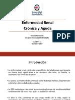 Dietoterapia en enfermedad renal crónica y aguda