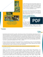 Plagas y enfermedades del pino pantula