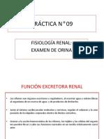 PRÁCTICA N° 09 EXAMEN DE ORINA [Reparado]
