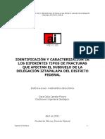 Identificación y caracterización de los diferentes tipos de fracturas que afectan el subsuelo de la Delegación Iztapalapa del Distrito Federal
