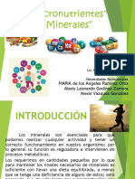 Expo Minerales (1)