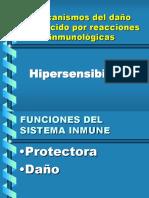 hipersensibilidad-2010