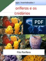 Aula Zoologia - Poríferos e cnidários.pptx
