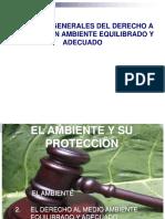 Derecho a Un Ambiente Sano y Equilibrado