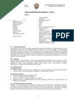 15541651571391.pdf