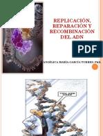 IV. Replicación Reparación y Recombinación Del Adn, Biotecnologia