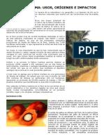 Aceite de palma, palmiste.pdf