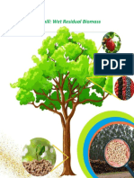 Unit 3_Phase 6 Bioenergy Roadmap Development