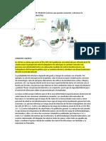 CONDICIONES DE VIDA Y DE TRABAJO.docx