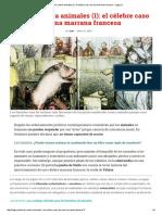 Juicios Contra Animales (I)_ El Célebre Caso de Una Marrana Francesa - Legis