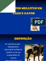Diabetes Mellitus Em Ces e Gatos