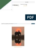 003 - Domando al Elefante