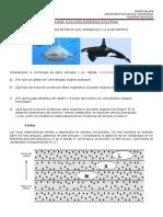 Guía Evidencias Evolutivas 2019