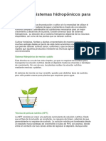 Tipos de Sistemas Hidropónicos Para Cultivar