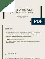 Lipidos simples