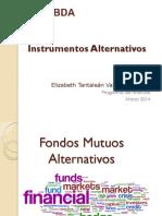 Instrumentos Alternativos
