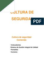Cultura Seguridad - Copia
