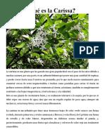 Frutas exoticas y sus beneficios.docx