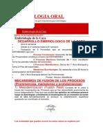 EMBRIOLOGIA ORAL_dias.docx