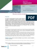 DIEEEO38-2017_Recursos_Naturales_Estrategicos_SaraGarciaTasich.pdf