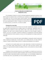propuesta_isla_merida