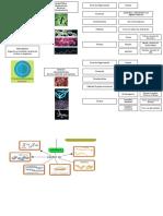 Archaea y Euro CTA