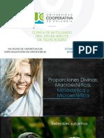 Proporciones Divinas-Macroestética, Miniestética, Microestética
