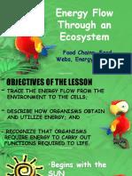 Lesson 14 EcosystemEnergyFlow