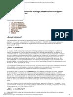 Guía Clínica de Patologías Estructurales Del Esófago_ Divertículos Esofágicos