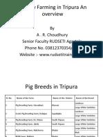Piggery Farming in Tripura an Overview
