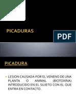 Intoxicaciones Mordeduras y Picaduras Dr. Merello