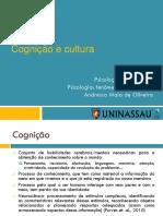 01 Aula Cognição e Cultura.pptx