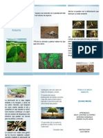Folleto Deforestacion - Copia