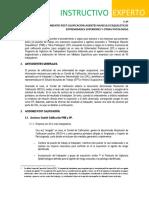 Instructivo Experto-Especialista Procedimiento Post Calificación v 4