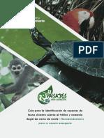Guía Para Identificación de Especies Sujetas a Tráfico