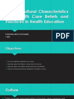 Filipino Cultural Characteristics and Health Care Beliefs.pptx