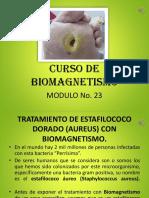 Biomangnetismo y la bacteria dorada